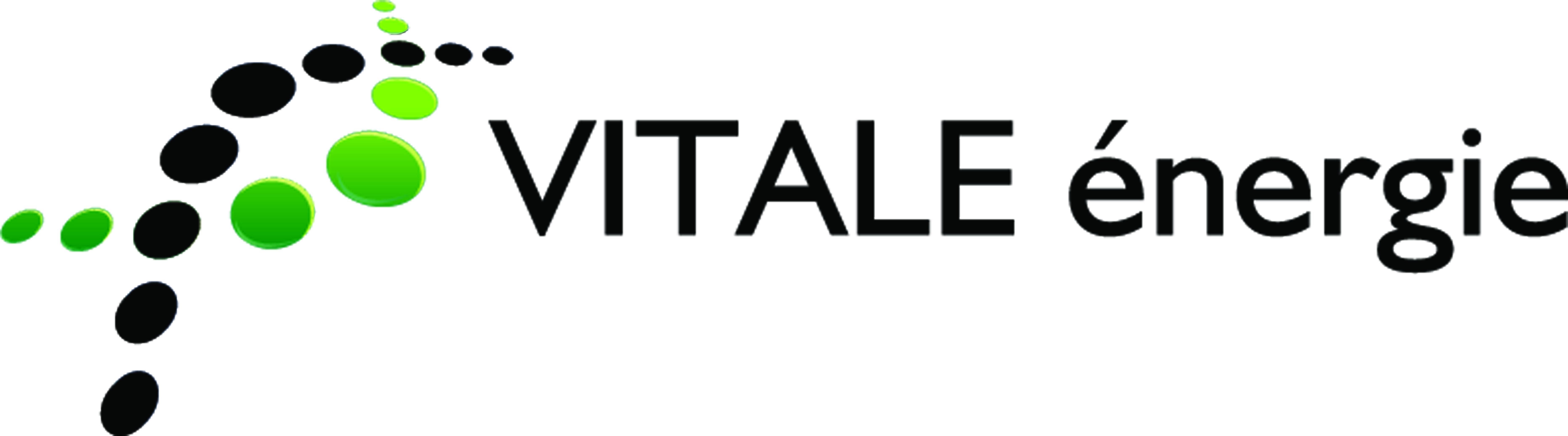 Vitale Energie Vente Installation et entretien de Pompe à chaleur, climatisation et remplacement de chaudière à 68 Wittelsheim, Richwiller, Cernay, Mulhouse